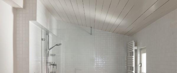 Plafond PVC : A quel prix et comment poser du PVC ...