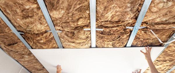 pose placo plafond entreprise