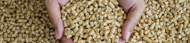 Chaudiere à granulé : fonctionnement, installation et prix