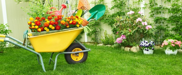 tarif jardinier paysagiste