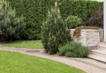 tarif paysagiste jardin